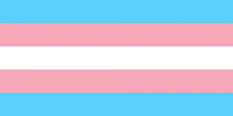 پرچم ترنس